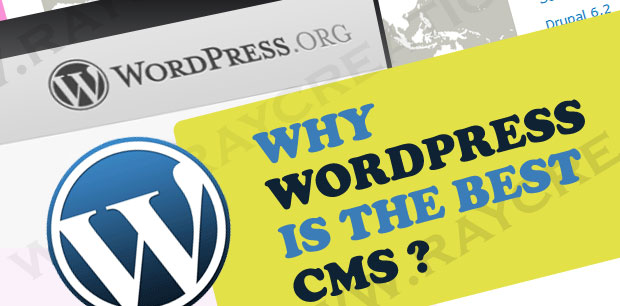 Why WordPress Is The Best CMS Platform For Your Website