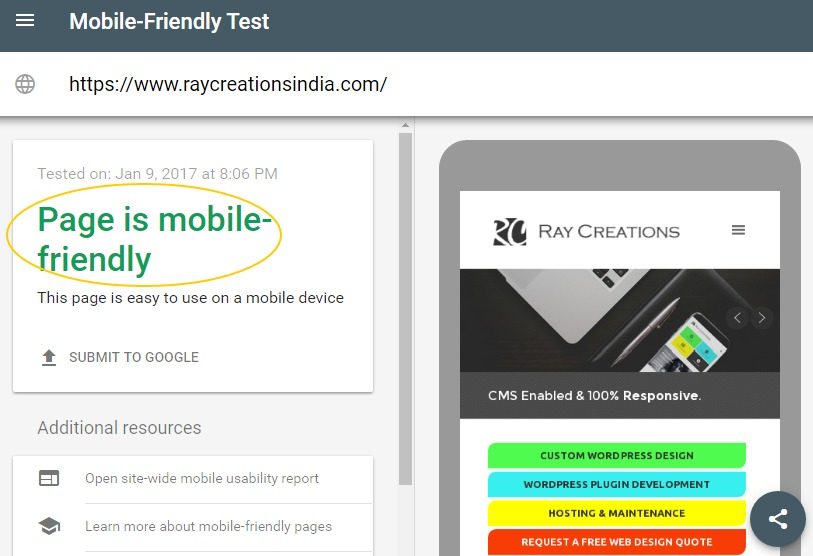 screenshot of mobile friendly test on raycreations website